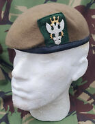 Mercian Regiment Small Crown Beret And Cap Badge New All Sizes