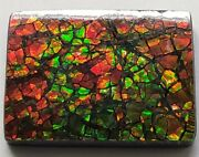 19x26 Ammolite Canada's Opal Square Shape Triplet 2 Color Green And Red Gemstone