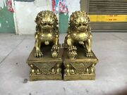 9'' Brass Copper China Feng Shui Exorcise Evil Spirits Guard Pair Foo Dogs Lion