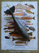 Duluth Fish Decoys Dfd 7.5 Dolphin Decoy Pictured In Book On Pg 69