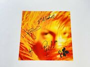 Stone Temple Pilots Rare Signed Promo Poster Bas Loa Scott Weiland Autographed