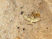 Rare Antique Ancient Egyptian Gold Hanger God Isis Good Health Cure Medcne2480bc