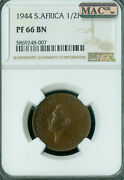 1944 South Africa Half Penney Ngc Pf66 Bn Pq Mac Spotless 150 Minted Very Rare