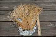 Lot 6 , Used Medium Barred Ginger Grizzly Rooster Saddle Feathers Fly Tying