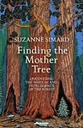 Finding The Mother Tree Uncovering The Wisdom And Intelligence Of The Forest
