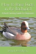 How To Raise Ducks In The Backyard A Duck Farming Guide For Beginners New