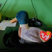 Beanie Babie Jake The Duck Collectable. Inside Tag 420