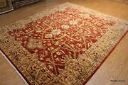 Wool Area Rug 8and039 X 10and039 Fine Quality Handmade Vegetable Dyed Rust Color