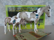 2019 Breyer Vintage Club Lillian And Molly Sport Horse Grulla Pinto Mare Foal 500