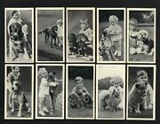Cigarette Cards. Carreras Tobacco. Dogs And Friend. Complete Set Of 50. 1936.