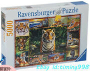 Collection Jigsaw Tiger World Jungle King 5000 Puzzles Rare New Sealed Stock