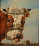 19th Century English School Portrait Of A Jersey Cow - One Of A Pair