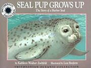 Oceanic Collection Seal Pub Grows Up The Story Of A Harbor Seal By Zoehfeld