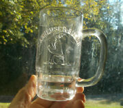 Anheuser Busch Emb Eagle 1890s Pre Pro Glass Advertising Beer Mug 5tall Nice
