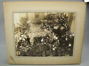Antique Large Matted Funeral Photo Mother In Casket Gainesville Tx Post Mortem