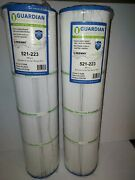 2 Guardian Pool Spa Filters 521-223 Replaces C-5396, Fc-2975, Pcst80,100 Sq Ft