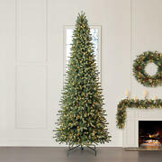 Christmas Tree 12and039 Ellsworth Fir With 1100 Warm White Steadybright Led Lights