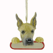Personalized Ornaments Great Dane Polyresin Christmas Puppy Dog 21866