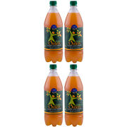 Ostlers Cloudy Apple Cider Vinegar With The Mother 1 Litre 4 Pack Unfiltered