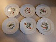 Cnp China France Lierre Lauvage 6 Floral Design Embossed Plates 6 5/8
