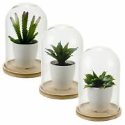 Artificial Plant With Glass Dome Jar Bell Decorative Display Wood Base Vintage