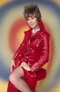 Sue Ane Langdon Exotic Pin Up Leggy In Red Coat Original 35mm Photo Transparency