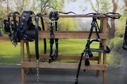 Deluxe Horse Drawn Sport Harness Special Model All Sizes With Collar