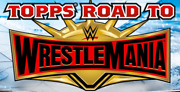 2019 Topps Road To Wrestlemania Wwe Mat Relics All Sets Pick From List