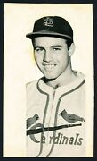 1946 Joe Garagiola Cardinals Rookie Happy To Be In The Big Leagues Photo