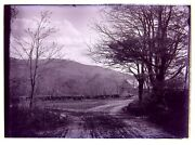 2 Glass Negatives Dwight's Mill Monadnock And Lake From Caitlin's Dublin Nh 1900