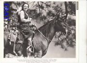 Patricia Morison Sexy Cowgirl On A Horse The Roundup Vintage Photo