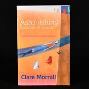 2003 Astonishing Splashes Of Colour Clare Morrall First Edition Signed