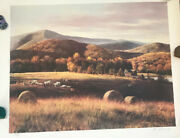 Vintage Hand Signed Numbered 217/275 Adolph Sehring Lithograph Barn In Medow