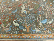 9and039x12and039 Gray Tree Of Life Birds Finest Hand Knotted Wool Super Pak Tabrizz Rug