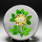 Antique Baccarat Yellow Wheatflower Glass Paperweight