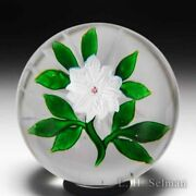 Antique Baccarat Double White Clematis Glass Paperweight
