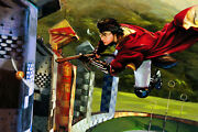 Harry Potter Harry And The Golden Snitch Giclee Canvas Uf Signed Jim Salvati