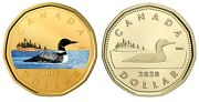 🇨🇦 Two Canadian Beautiful Loonie 1 Dollar Coins, Silver And Proof, Unc, 2020