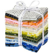 Jetty By Carolyn Friedlander Quilt Fabric Fat Quarter Bundle Collection Of 27