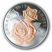 🇨🇦 Canada 3 Dollars Coin Queen Elizabeth Gold Plated Rose Blossoms 2019