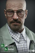 Cgl Toys 14 Ms01 Breaking Bad Walter Male Action Figure Statue Collectible Toy
