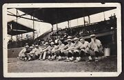 1915 Rogers Hornsby St. Louis Cardinals Rookie Vintage Baseball Team Photo