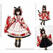 New Azone Alice Time Of Grace Iv Taisho Roman Black Cat Rondo 1/3 Complete Doll