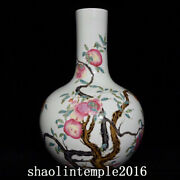 18 Old China The Qing Dynasty Pastel Pomegranate Grain Celestial Bottle
