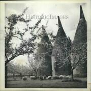 1963 Press Photo Oast Houses For Drying Hops In Paddock Wood, Kent, England