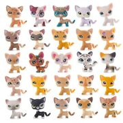 High Quality Action Figure Model Lps Cat Rare Standing Shorthair Old Kittens Toy