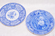 Vintage Collectible 2 The Spode Blue Room Floral And Botanical Pattern Plates