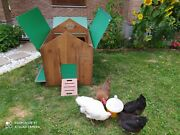 Chicken Coop For 12 Hens Hpl Laminate For Garden For Educational Farm Washable