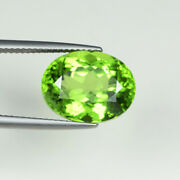9.52 Ct Top Lustrous D Best Green - Natural Peridot - Burma - See Vdo 5549 A