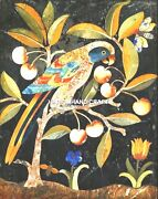 Inlay Parrot Marble Dining Table Top Antique Floral Furniture Garden Decor H5065